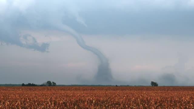 tornado - tornado stock videos & royalty-free footage