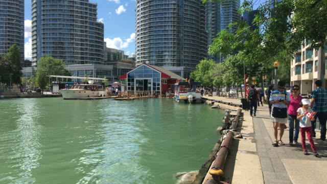 toronto, canada: city harbourfront or waterfront. point of view of the famous place which is a tourist attraction in the capital city of the ontario province. real time image in natural light. - lake ontario bildbanksvideor och videomaterial från bakom kulisserna