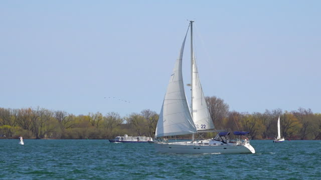 toronto canada: sail vessel on the waters of lake ontario. nautical recreation activities are common in the waterfront during the summer months - nautical vessel点の映像素材/bロール