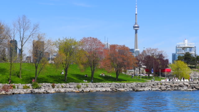 stockvideo's en b-roll-footage met toronto canada: urban skyline including the cn tower during the daytime - ontariomeer