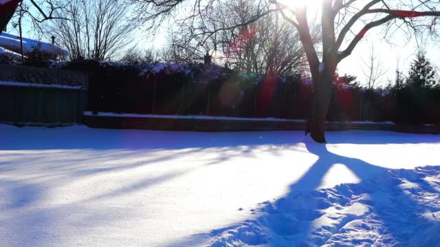 vidéos et rushes de toronto, canada: winter weather scene in an urban area during the morning - non urban scene