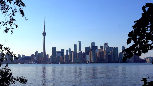 toronto images: the toronto skyline a mayor tourist landmark - toronto stock videos & royalty-free footage