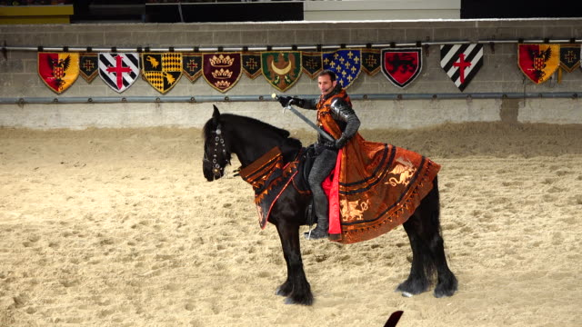 stockvideo's en b-roll-footage met toronto, ontario, canada-may 1, 2014: performance with horses in the arena of the medieval times restaurant which is located in the exhibition place... - redactioneel