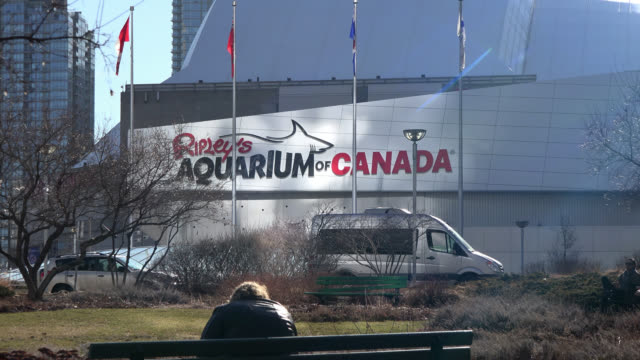 toronto, ontario, canada-may 10, 2014: the logo of the ripley's aquarium is seen on a lateral wall of the famous building. a man sits on a bench in... - lens flare stock videos & royalty-free footage