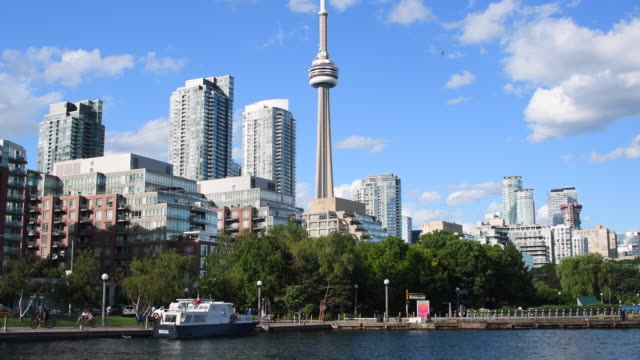 toronto,canada: urban skyline including cn tower. beautiful downtown and financial district from across the water of lake ontario in blue clear day - cn tower bildbanksvideor och videomaterial från bakom kulisserna