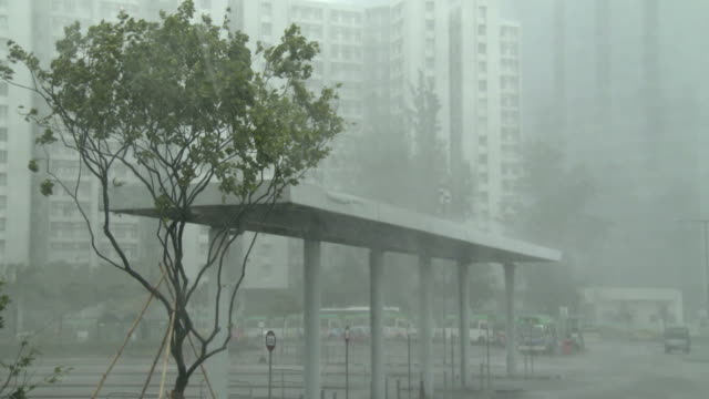 Torrential rain pours down as typhoon Hato nears Hong Kong on 23rd August 2017