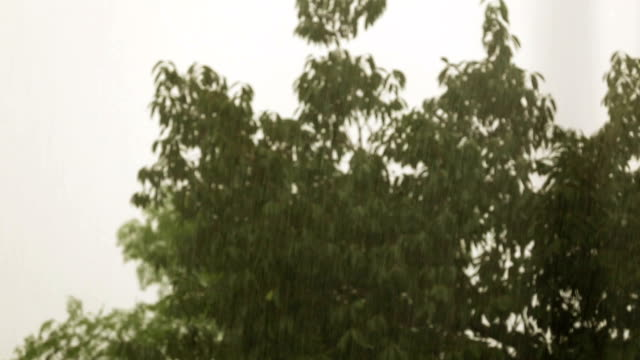 Hevige stortregens
