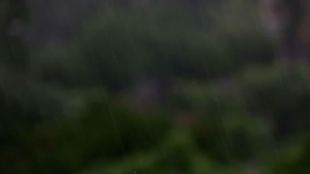 torrential rain - wilderness area stock videos & royalty-free footage