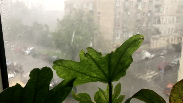 Torrential rains accompanying sudden outbursts of storms in  Polish city