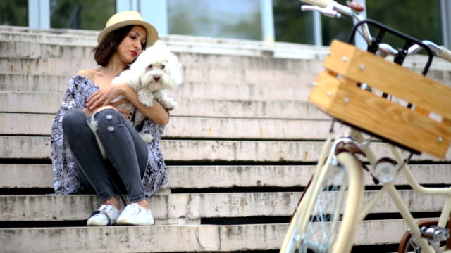touching scene of hipster girl holding fluffy pet, maltese dog - maltese dog stock videos and b-roll footage