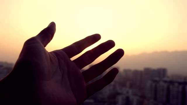 touching sunlight at city sunset - reaching stock videos & royalty-free footage