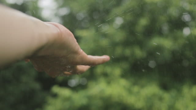 Touching the falling rain