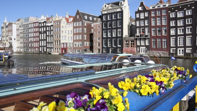 tour boats infront of traditional amsterdam houses, amsterdam, netherlands - in front of stock videos & royalty-free footage