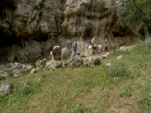 tour guides lead donkeys along a path near the western wall in jerusalem. - gerusalemme est video stock e b–roll