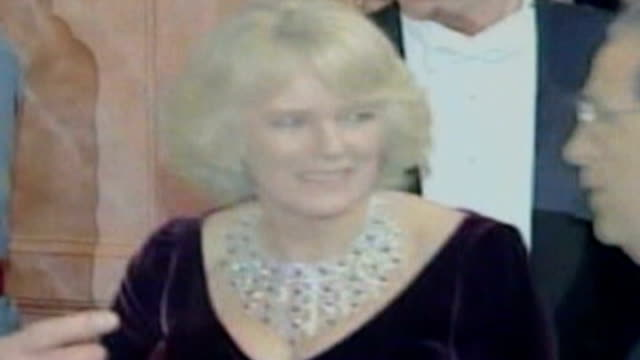 mystery of camilla's diamond and ruby necklace usa philadelphia the academy of music int **flash photography** camilla duchess of cornwall camilla... - necklace stock videos & royalty-free footage