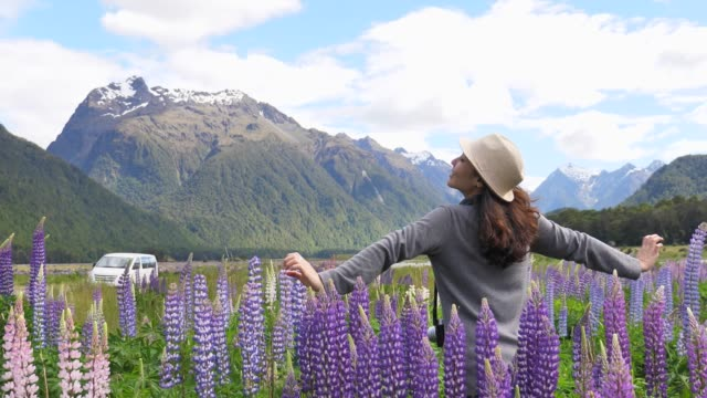 tourist arm stretch in new zealand - road trip stock videos & royalty-free footage