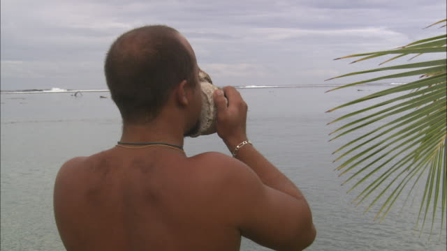 a tourist blows into a conch shell as he stands on a beach. - conch stock videos & royalty-free footage