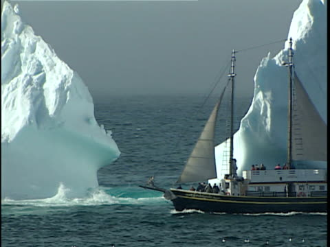 ws zi pan tourist boat on sea with grounded iceberg in background, cape spear, st john's, newfoundland, canada - ausflugsboot stock-videos und b-roll-filmmaterial