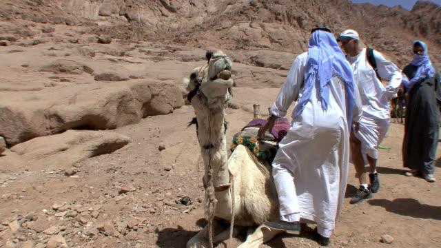 WS Tourist climbing on camel outside gates of St Catherine's Monastery, Mount Sinai, Egypt