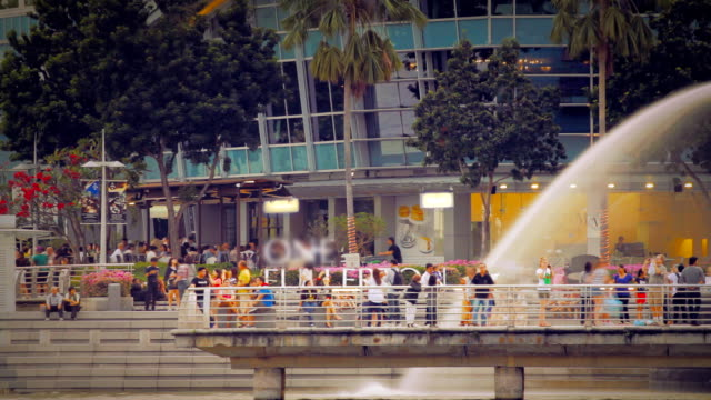 tourist enjoy the singapore trip timelapse - merlion fictional character stock videos and b-roll footage