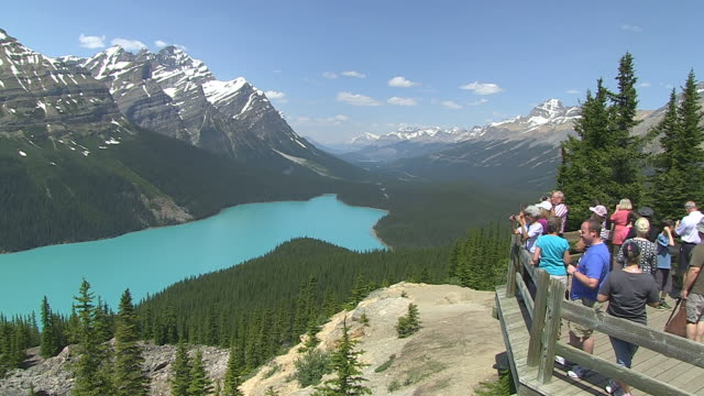 WS Tourist enjoying and taking picture at Peyto Lake / Banff Nationalpark, Alberta, Canada