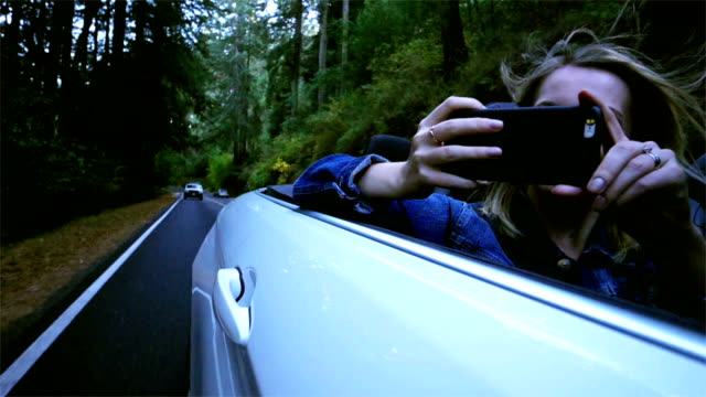 vídeos de stock e filmes b-roll de tourist exploring california redwoods: driving - convertible