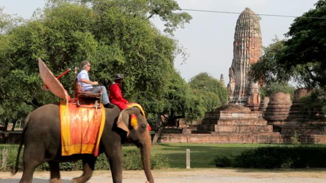 vidéos et rushes de groupe touristique se trouve au centre de la ville sur des éléphants - thaïlande