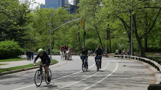 vídeos de stock, filmes e b-roll de tourist horse cart and bike cycling in central park, new york city - animal de trabalho