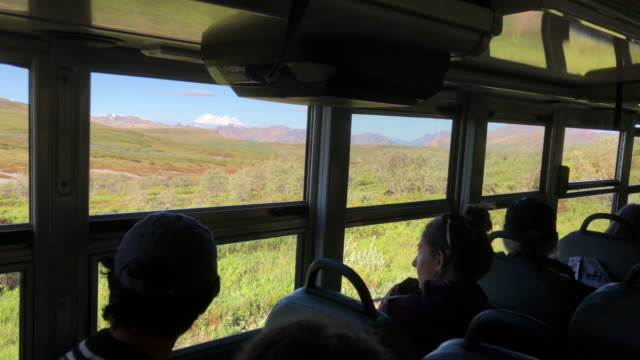 tourist looking outside with binoculars on the tour bus inside the denali national park, alaska - binoculars stock videos & royalty-free footage