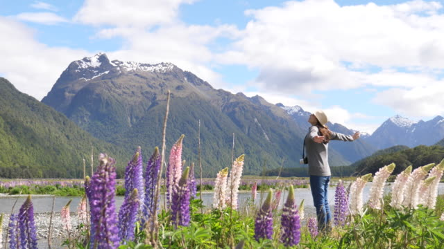 tourist opening arms in new zealand - arms raised stock videos & royalty-free footage