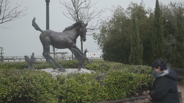 tourist pauses to take in the misty sculpture on main street amidst pandemic related restrictions on march 28, 2021 in chincoteague, virginia. there... - street name sign stock videos & royalty-free footage