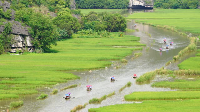 WS ZO, Tourist ride boat for travel sight seeing Rice field on river 'Ngo Dong' at TamCoc, Ninhbinh, Vietnam;