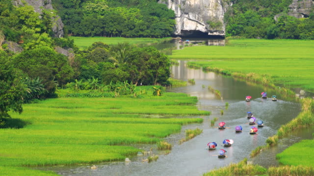 WS PR, Tourist ride boat for travel sight seeing Rice field on river 'Ngo Dong' at TamCoc, Ninhbinh, Vietnam;