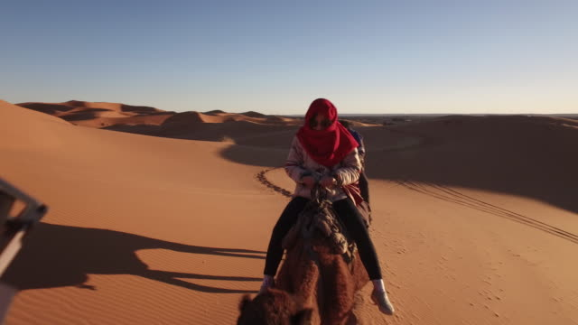 tourist riding camel train in sahara desert, africa - camel train stock videos & royalty-free footage
