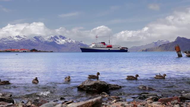 Tourist ship, anchored in harbor, Grytviken, South Georgia, Southern Ocean
