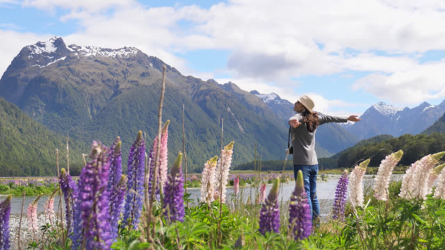 Tourist travel in New Zealand