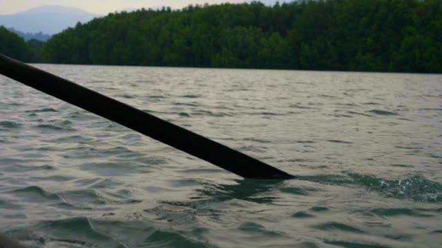 SLO MO, Tourist Travel; Tourism rowing boat Mangrove Forest at Koh Chang.