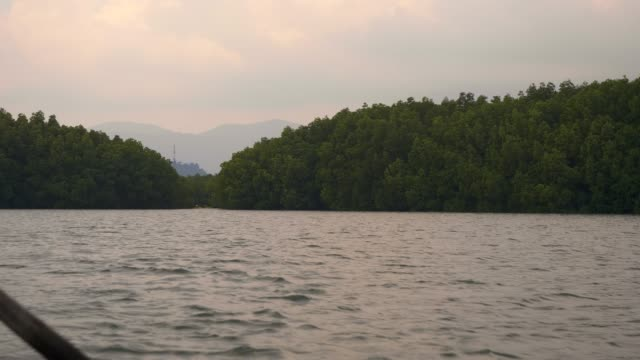 Tourist Travel; Tourism rowing boat Mangrove Forest at Koh Chang.