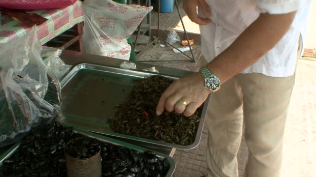 ms tu tourist trying out fried cockroaches at combodian market / sihanoukville, cambodia - insect stock videos & royalty-free footage