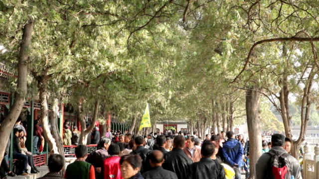 tourist walking in summer palace yiheyuan in chinese - musical instrument bridge stock videos & royalty-free footage