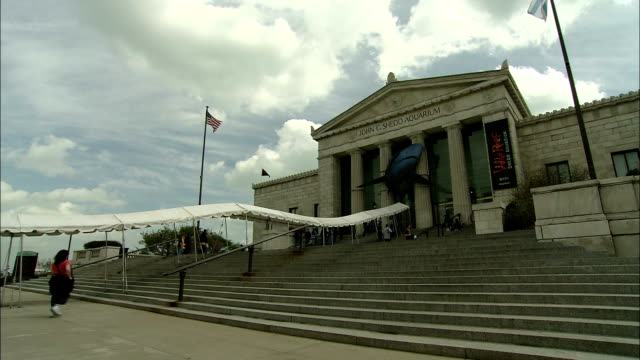tourists approach the entrance to the john g. shedd aquarium. - shedd aquarium stock videos & royalty-free footage