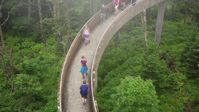 tourists climbing pathway to clingmans dome observation tower in the great smoky mountains national park - elevated walkway stock videos & royalty-free footage
