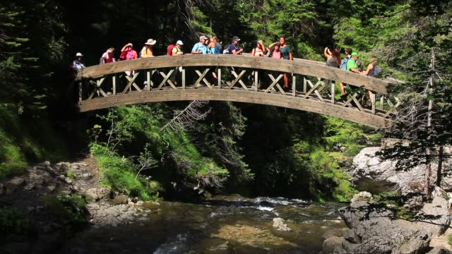 "tourists cross a wooden bridge near the waterfall at ""cirque de saint meme"" a popular tourist site on september 3, 2020 in saint pierre d entremont,... - beauty in nature stock videos & royalty-free footage"