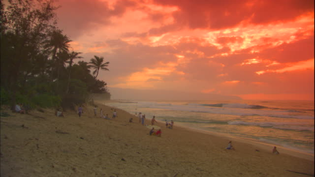 tourists enjoy a beach in honolulu. - hawaii islands stock videos & royalty-free footage