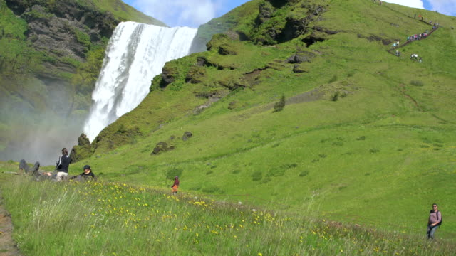 Tourists enjoying the meadow and the flowers in front of Skógafoss waterfall in Iceland during a sunny bright day