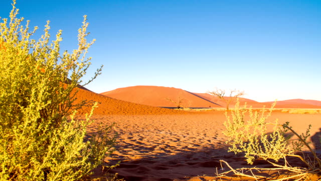 ds ws tourists exploring the namibian desert - namibian desert stock videos and b-roll footage
