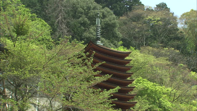 tourists gather below the 13-tier pagoda at tanzan shrine in japan. - pagoda点の映像素材/bロール