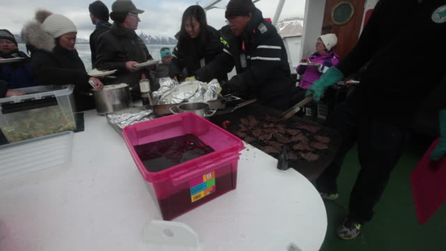 tourists having lunch - whale steak and steamed salmon, on the board of a tourist boat sailing slowly through sea-ice in front of nordenskiöldbreen glacier on the spitsbergen island, svalbard - salmon steak stock videos & royalty-free footage