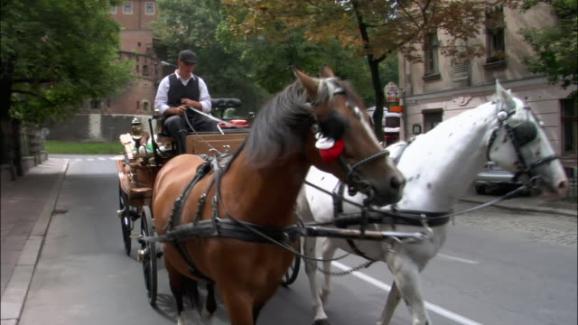 Tourists in horsedrawn carriage passing camera on street outside Wawel Castle / Krakow, Poland