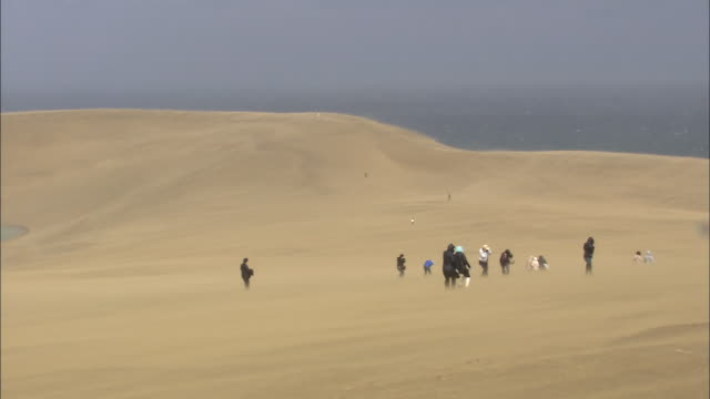 Tourists In Sandstorm, Tottori Sand Dunes, Japan